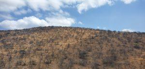 SA Landscape Change4