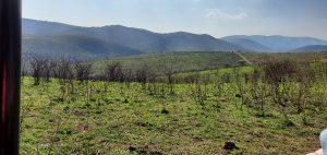SA Landscape Change1
