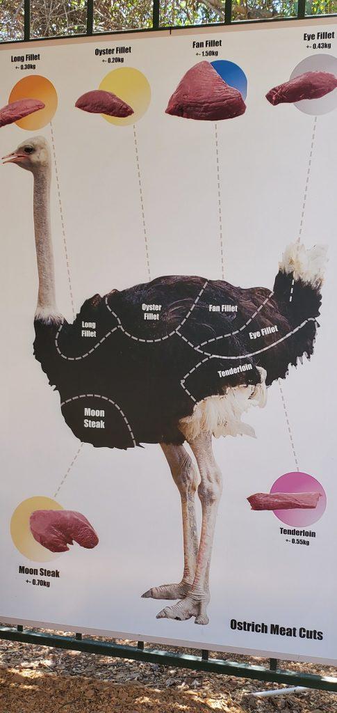 Ostrich Meat Cuts