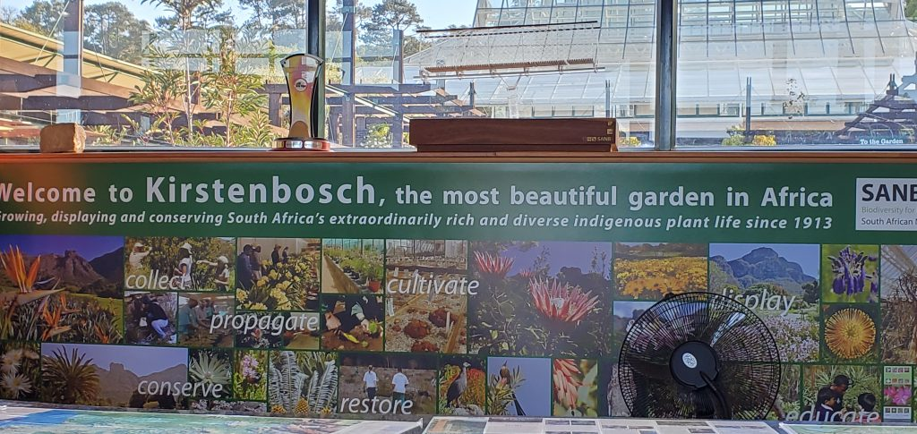 Welcome to Kirstenbosch National Botanical Gardens