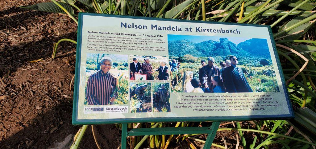Nelson Mandela's visit to Kirstenbosch
